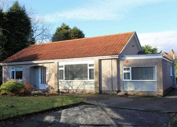 Thumbnail 3 bed detached bungalow to rent in Gowanlea Place, Comrie