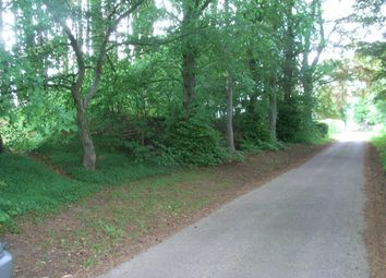 Thumbnail Land for sale in Whiterow, Forres