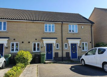 Thumbnail 2 bed terraced house to rent in Dolphin Road, Norwich