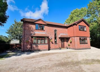 Thumbnail 4 bed detached house for sale in Elfed Drive, Buckley