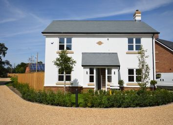 Thumbnail 4 bed detached house to rent in The Nursey, Pennington, Lymington