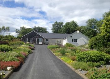 Thumbnail 9 bed detached bungalow for sale in Cribyn, Lampeter