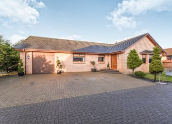 Thumbnail 4 bedroom detached bungalow for sale in Fisher Court, Knockentiber, Kilmarnock