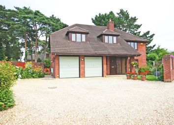 Thumbnail 4 bed detached house for sale in Pine Drive, St Ives, Ringwood