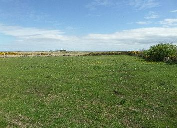 Thumbnail Land for sale in Tain, Castletown