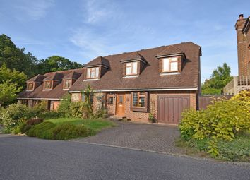 Thumbnail 4 bed detached house for sale in Mill Close, Staplecross