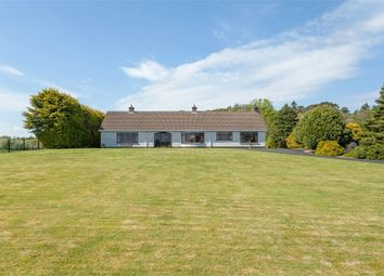 Thumbnail 3 bed detached bungalow for sale in Carnlough Road, Broughshane, Ballymena, County Antrim
