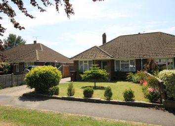 Thumbnail 3 bed bungalow to rent in Ettrick Close, Chichester