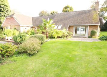 Thumbnail 5 bed detached bungalow to rent in Lynwood Avenue, Epsom