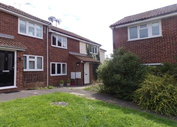 Thumbnail 2 bed property to rent in Hazeleigh, Brentwood