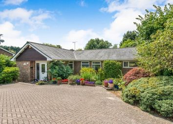 Thumbnail 4 bed bungalow for sale in Hasteds, Hollingbourne, Maidstone, Kent