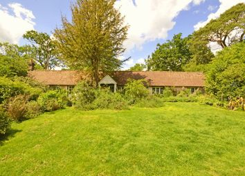 Thumbnail 2 bed bungalow for sale in Sandy Lane, Rushmoor, Farnham