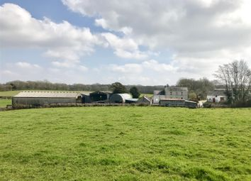 Thumbnail 3 bed farm for sale in Capel Dewi, Carmarthen