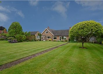 Thumbnail 4 bed bungalow for sale in Bramcote Drive, Beeston