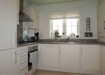 Thumbnail 2 bedroom semi-detached house to rent in Keymer Avenue, Peacehaven