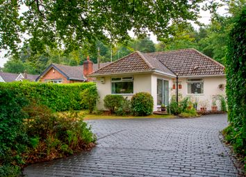 Hillside Walk, Storrington, West Sussex RH20. 3 bed bungalow