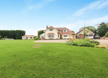 Thumbnail 5 bed detached house for sale in Castledon Road, Downham, Essex