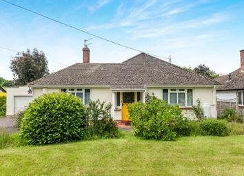 Thumbnail 3 bed bungalow for sale in Newton Poppleford, Sidmouth, Devon