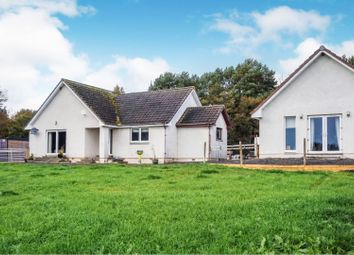 Thumbnail 4 bed detached bungalow for sale in House, Fortrose