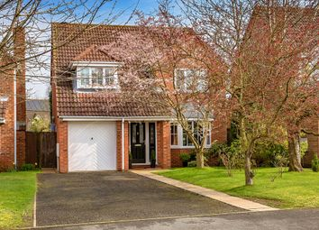 Thumbnail 4 bed detached house for sale in Hampton Drive, Newport