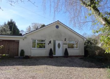 Thumbnail 3 bed bungalow for sale in Banham, Norwich