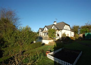 Thumbnail 4 bed detached house for sale in Joys Green, Lydbrook