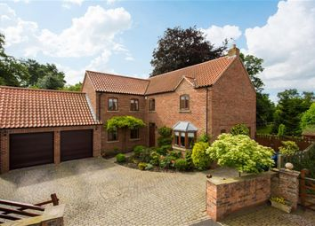 Thumbnail 4 bed detached house to rent in Rythergate, Cawood, Selby