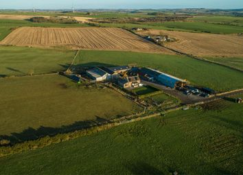 Thumbnail Farm for sale in Fyvie, Turriff
