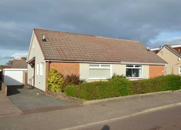 Thumbnail 2 bed bungalow for sale in Chestnut Grove, Larkhall
