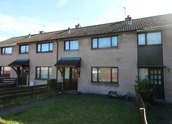 Thumbnail 3 bed terraced house for sale in Ivan Street, Lisburn