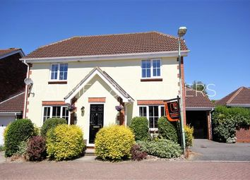 Thumbnail 4 bedroom detached house for sale in Spire Chase, Sudbury