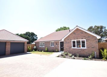 Thumbnail 3 bed detached bungalow for sale in Whitegates Court, Little Clacton, Clacton-On-Sea