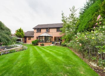 Thyme Close, Chineham, Basingstoke RG24. 4 bed detached house for sale
