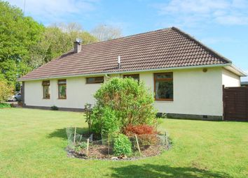 Thumbnail 4 bed detached bungalow for sale in Gretna Green, Gretna, Dumfries And Galloway