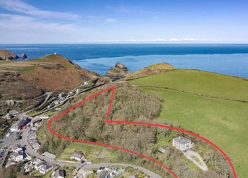 Thumbnail 6 bed detached house for sale in St. Juliot, Boscastle