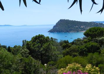 Thumbnail 7 bed villa for sale in Rayol Canadel, Provence-Alpes-Côte D'azur, France