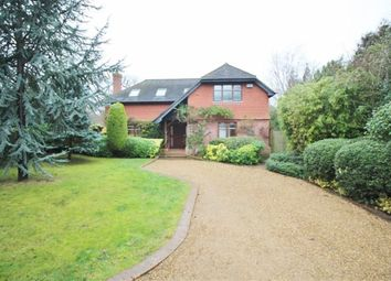 Thumbnail 4 bed detached house to rent in Holly Bush Lane, Sevenoaks