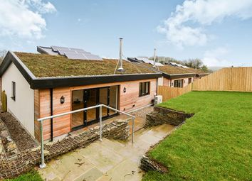 Thumbnail 3 bed bungalow for sale in Beech Meadow, Chilsworthy, Holsworthy