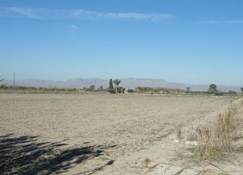 Thumbnail Land for sale in Elche, Alicante, Spain