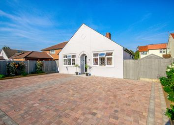 Thumbnail 3 bed detached bungalow for sale in Straight Road, Colchester