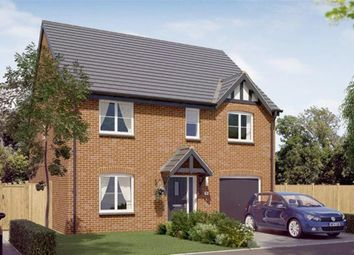 Thumbnail 4 bed detached house for sale in Plot 65 The Rosebury, Newbold Road, Chesterfield