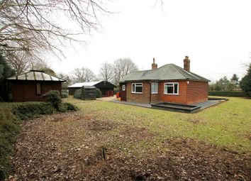 Thumbnail 3 bed detached bungalow for sale in Hollow Road, Felsted, Dunmow, Essex