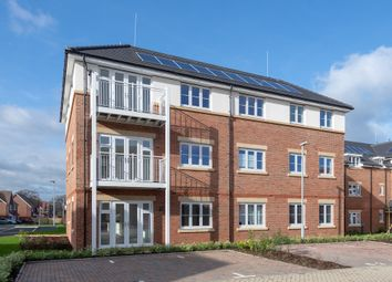 """Thumbnail 1 bedroom flat for sale in """"Maple Court"""" at Warren House Road, Wokingham"""