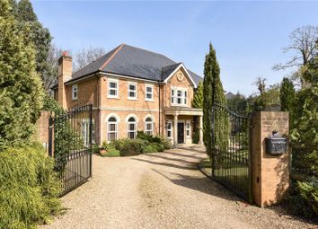 Thumbnail 5 bedroom detached house to rent in Stonehill Gate, Hancocks Mount, Ascot, Berkshire
