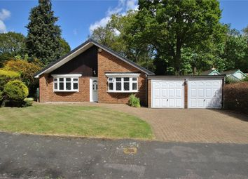 Thumbnail 3 bed detached bungalow for sale in Horsell, Surrey