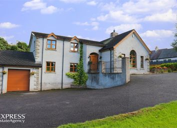 Thumbnail 4 bed detached house for sale in Lurgan Road, Dromore, County Armagh