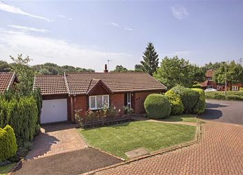 Thumbnail 3 bed detached bungalow for sale in Alder Grove, Bromley Cross, Bolton