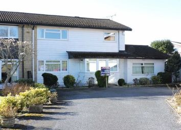 Thumbnail 4 bed detached house to rent in Coedmor Sketty, Swansea