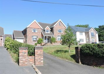 Thumbnail 5 bed detached house for sale in Waterloo Road, Capel Hendre, Ammanford