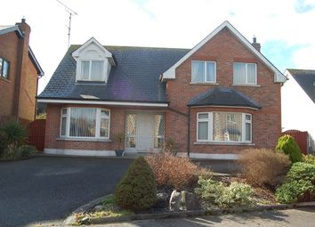 Thumbnail 4 bed detached house for sale in 8 Waterview, Point Road, Dundalk, Louth